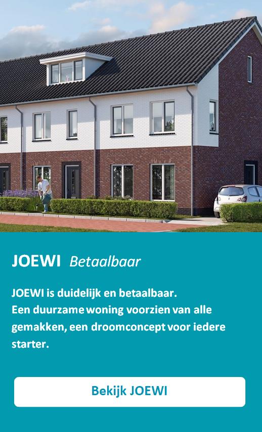1. JOEWI AFBEELDING