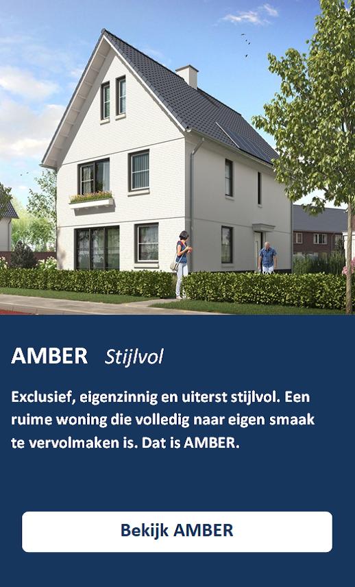 AMBER AFBEELDING